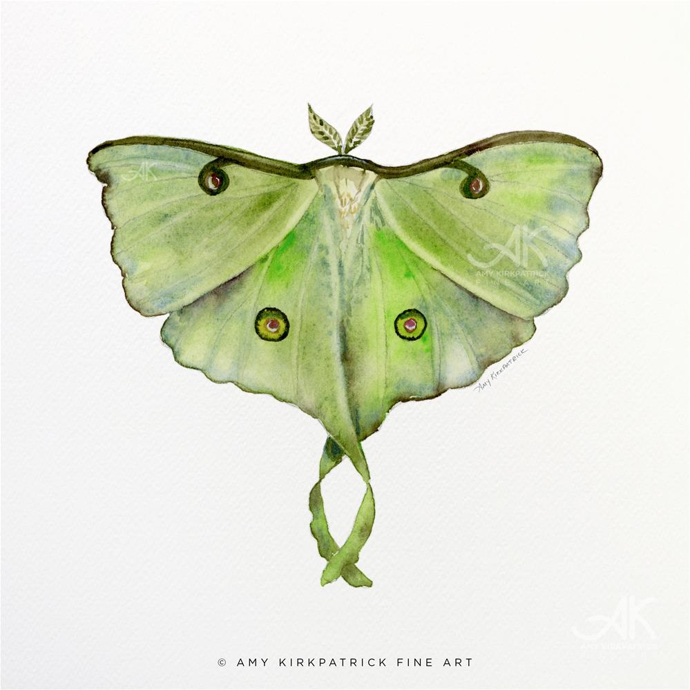 """#100 Luna Moth #0410"" original fine art by Amy Kirkpatrick"
