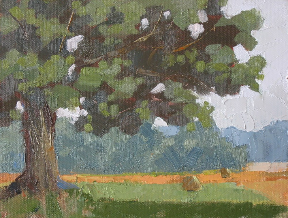 """Owensboro Ky tree 6x8 oil"" original fine art by Claudia Hammer"