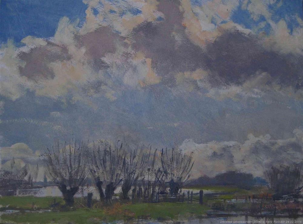 """""""Dierense uiterwaarden. Dieren, The Netherlands."""" original fine art by René PleinAir"""