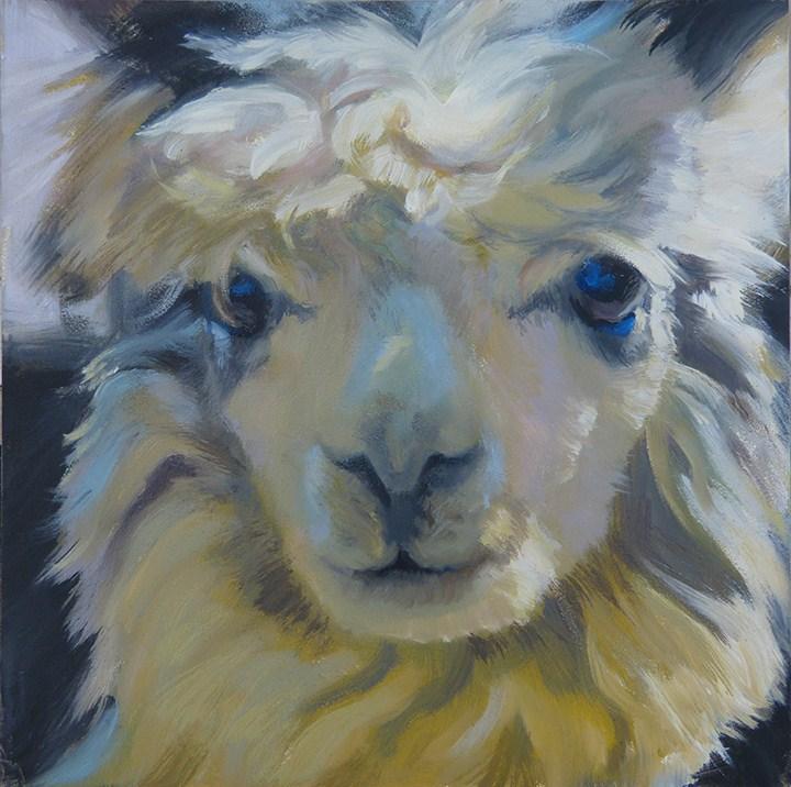 """Alpaca Eyes - Day 1"" original fine art by Anette Power"