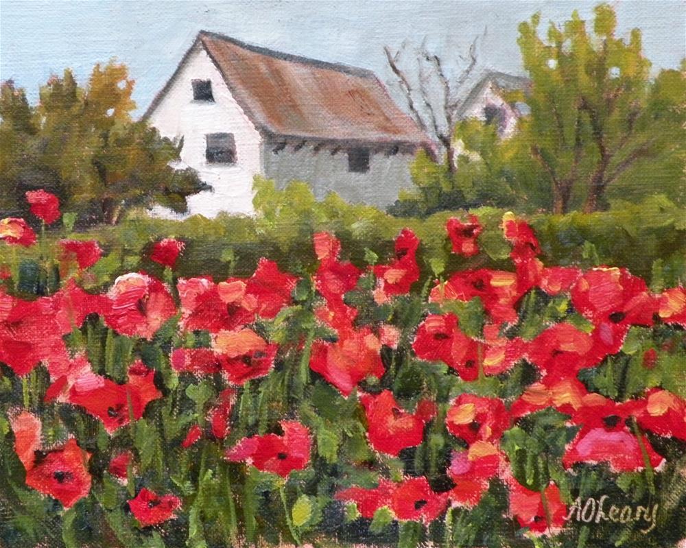 """Lone Star Blossoms"" original fine art by Alice O'Leary"