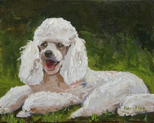 """White Poodle – Dog #22"" original fine art by Daryl Lyn King"