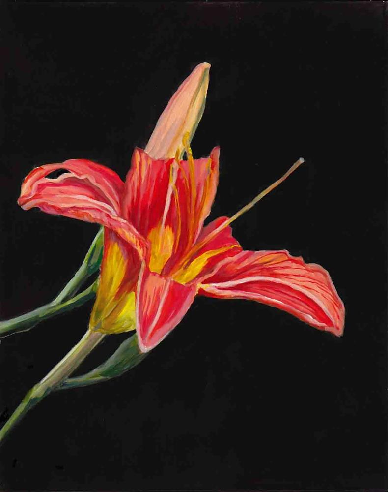 """Day Lily"" original fine art by Charlotte Yealey"