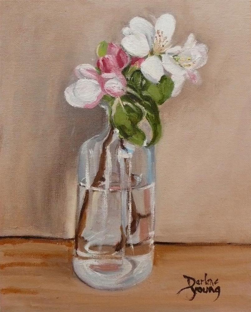 """1113 Apple Blossoms, 8x10, oil on board"" original fine art by Darlene Young"