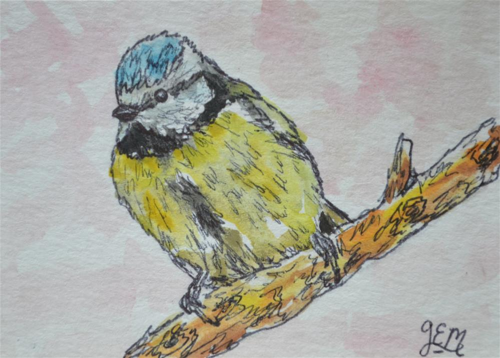 """ Blue Tit Watercolor ACEO"" original fine art by Gloria Ester"