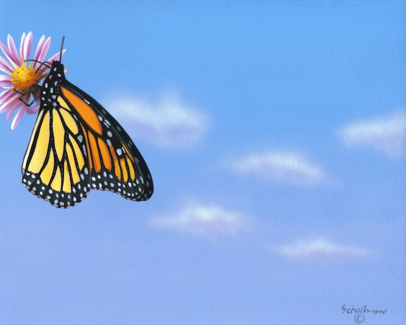"""""""Blue Sky and Butterfly"""" original fine art by Fred Schollmeyer"""