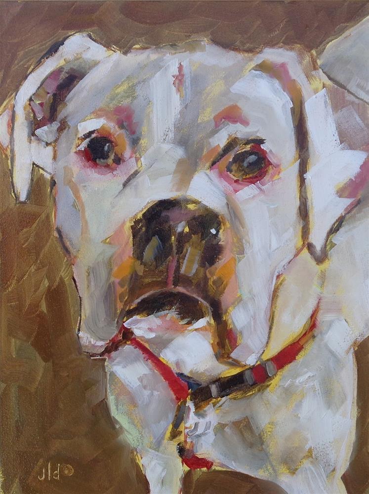"""""""White boxer"""" original fine art by Jean Delaney"""