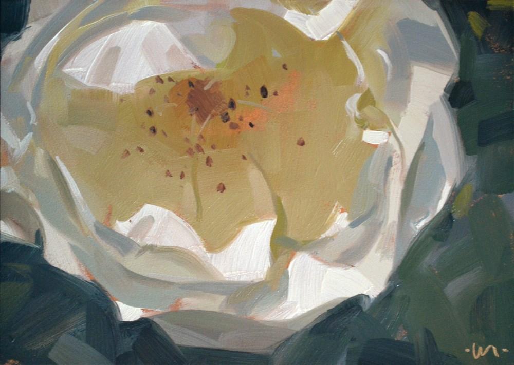 """Delicate White"" original fine art by Carol Marine"