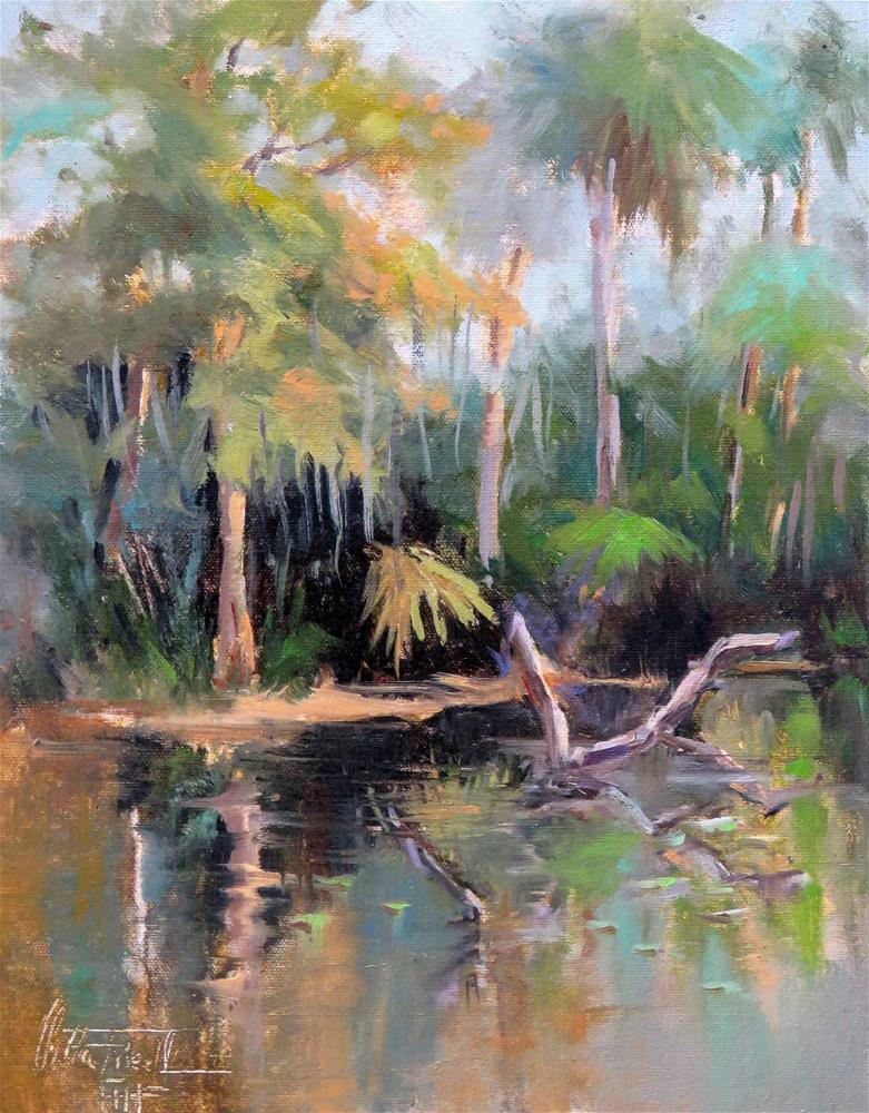 """Shell Creek  - Florida"" original fine art by Christa Friedl"