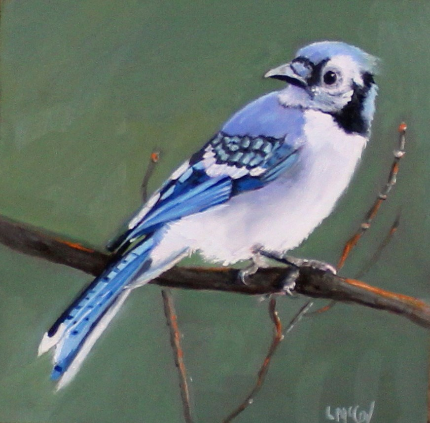 """Where's Mom? Blue Jay Painting"" original fine art by Linda McCoy"