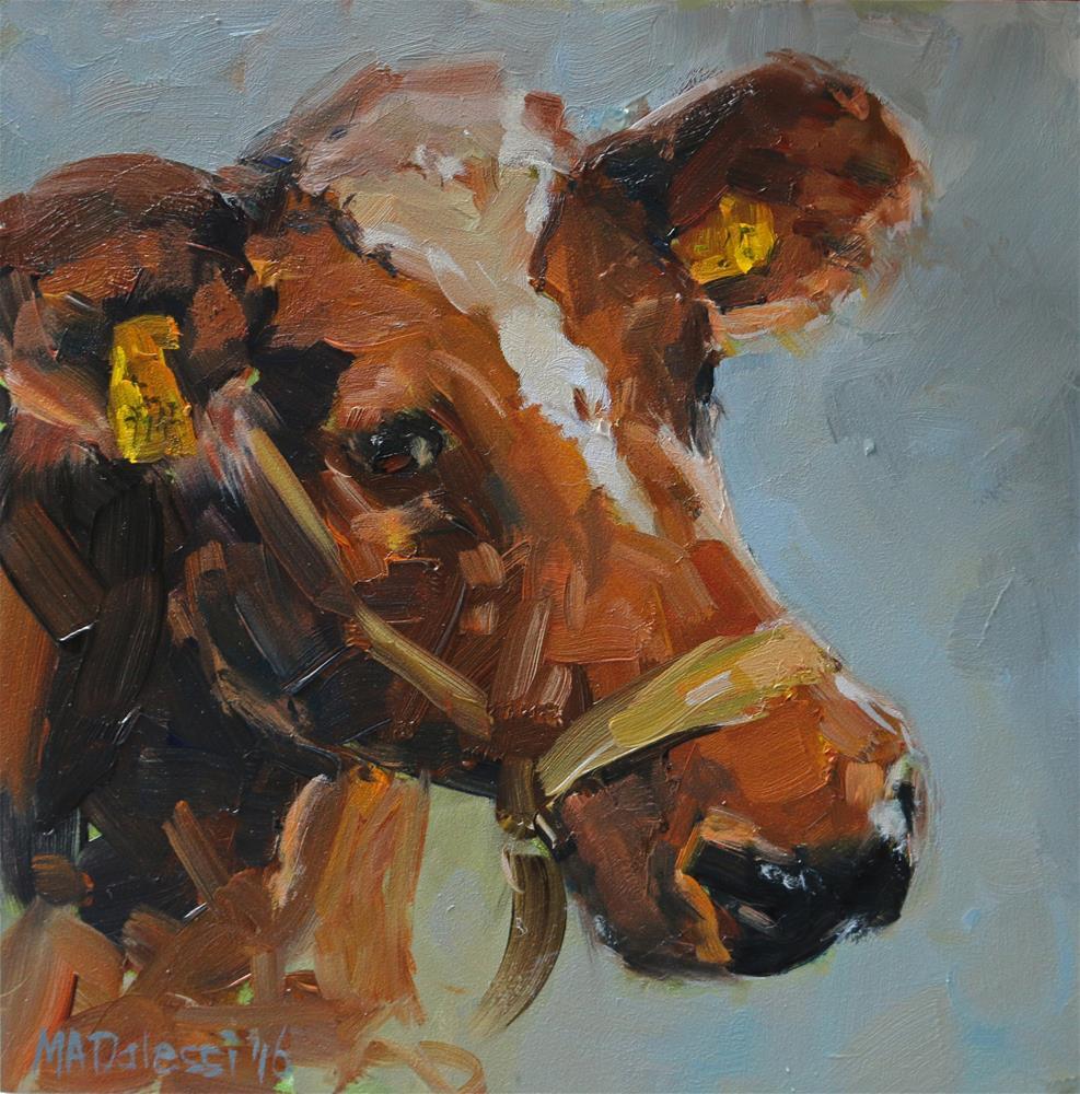 """""""Dutch cow"""" original fine art by Miranda Dalessi"""