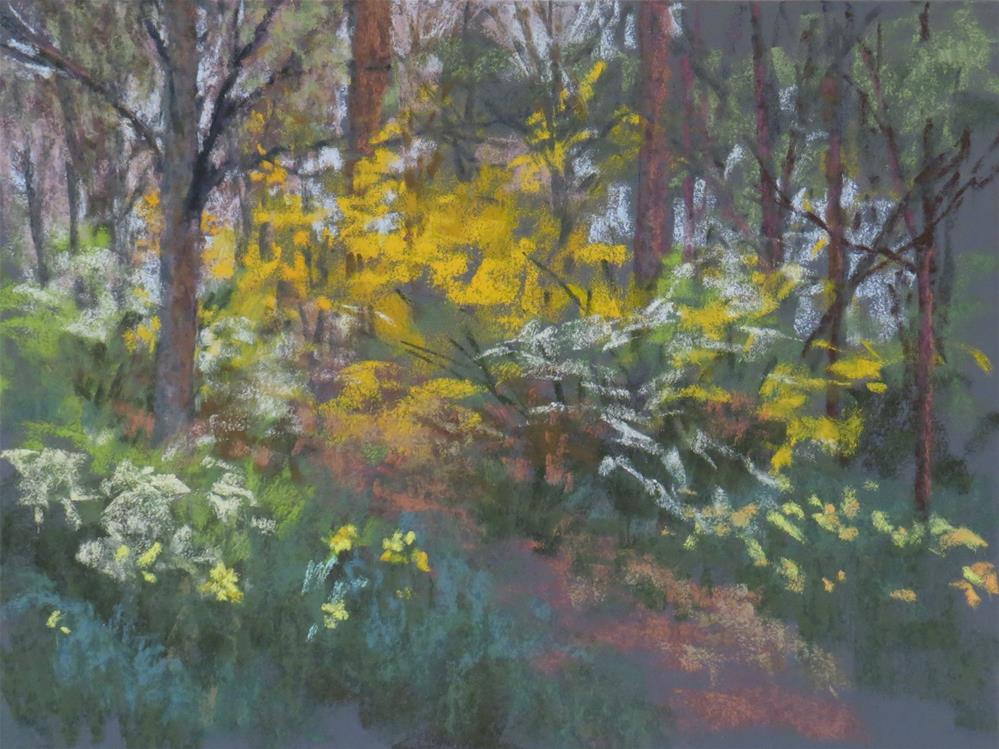 """Daffodil Hill"" original fine art by Marsha Savage"