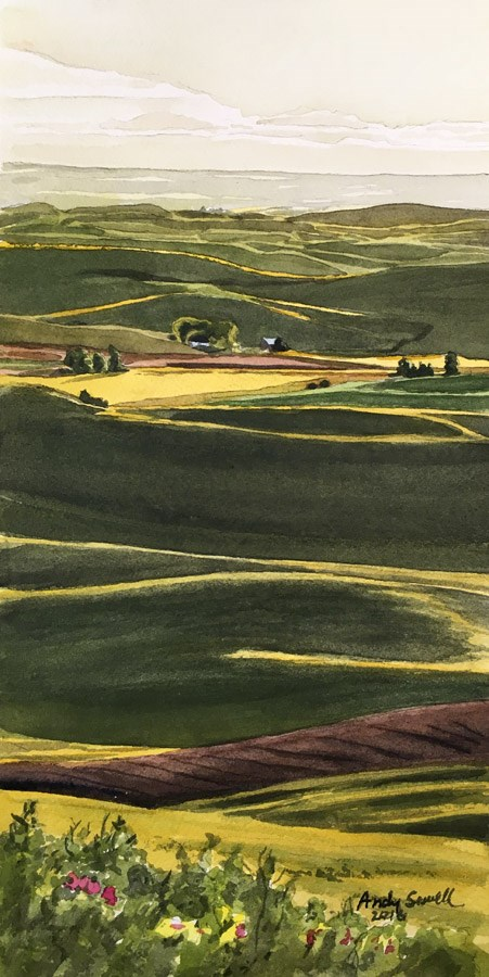 """Palouse Spring Wheat"" original fine art by Andy Sewell"