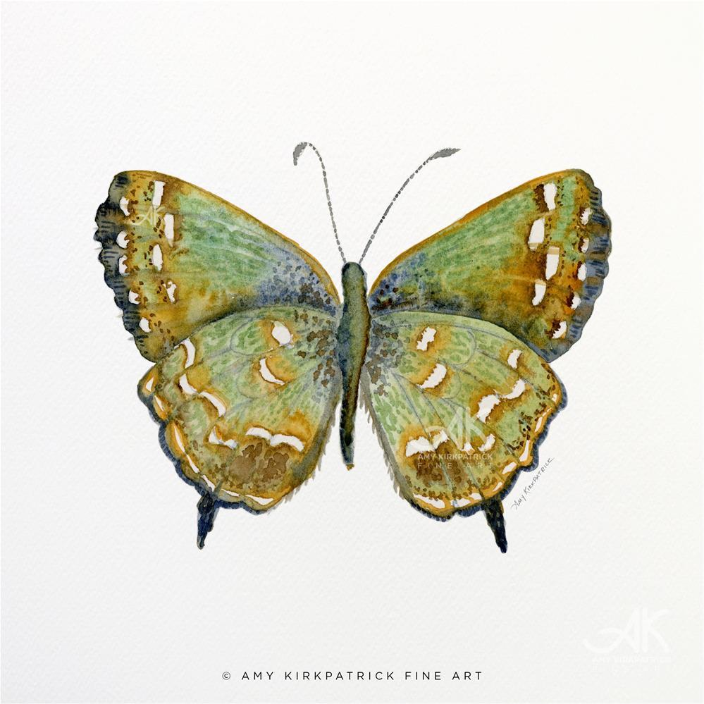 """""""#38 Hesseli Butterfly #0347"""" original fine art by Amy Kirkpatrick"""