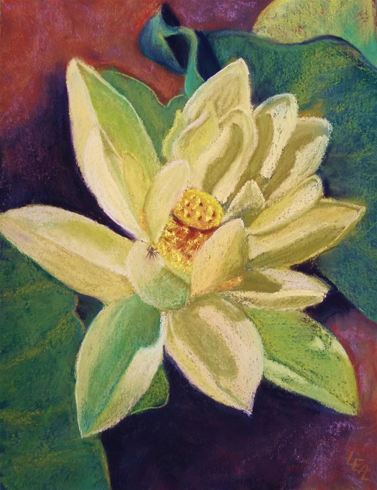 """Lotus Contemplation"" original fine art by Anna Lisa Leal"