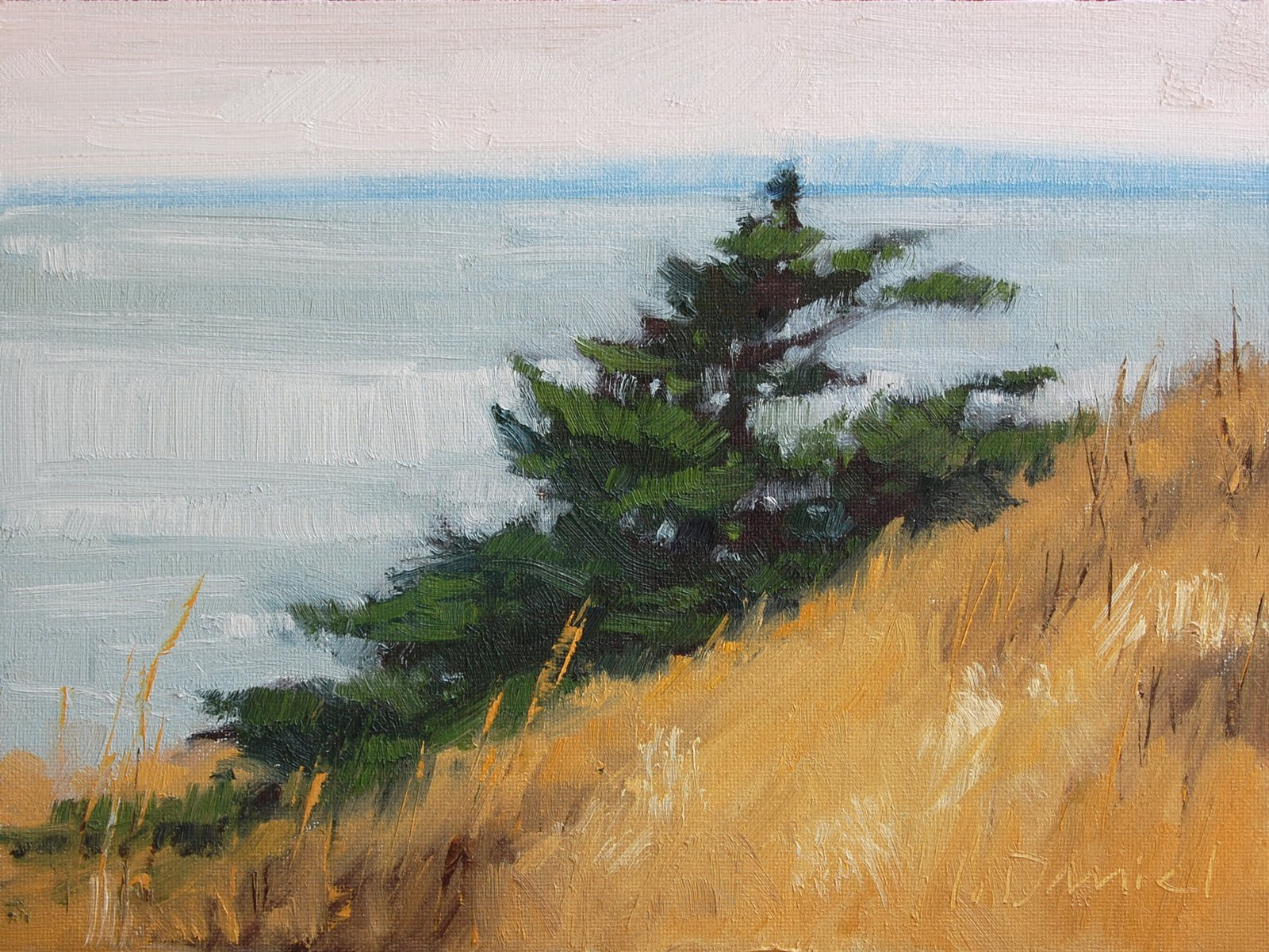 """Cliffside Breezes"" original fine art by Laurel Daniel"