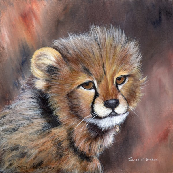 """Cheetah Cub No 3"" original fine art by Janet Graham"