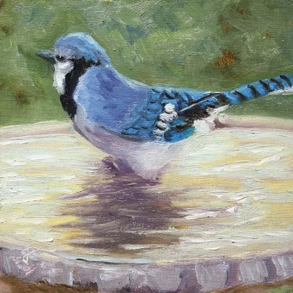 """Blue Jay Bath"" original fine art by Jane Frederick"