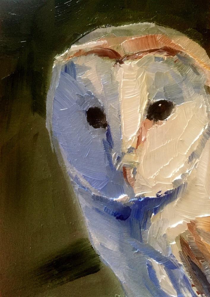 """Sunlit Barn Owl"" original fine art by Gary Bruton"