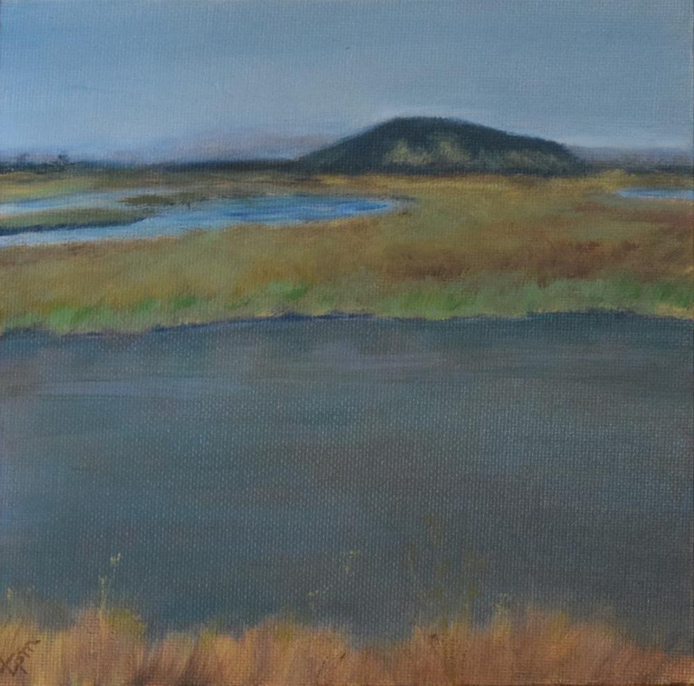 """Pacheco Pond"" original fine art by Tisha Mark"