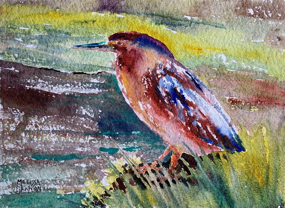 """Green Heron Standing"" original fine art by Melissa Gannon"