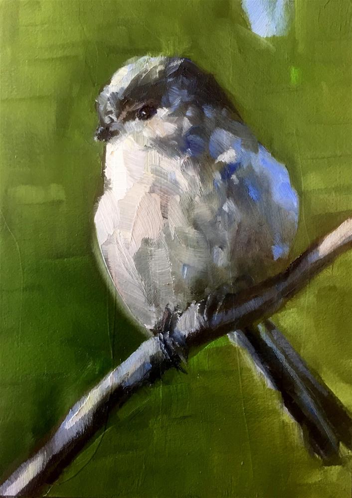 """Long-Tailed Tit"" original fine art by Gary Bruton"