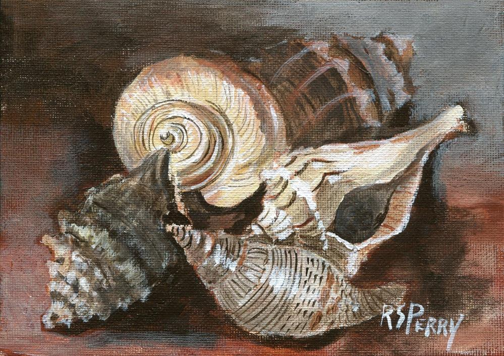 """Knobbed whelk, true tulip, lightning whelk, sundia"" original fine art by R. S. Perry"