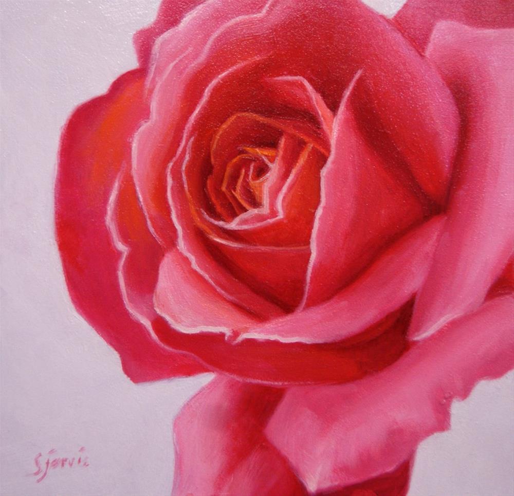 """""""Deep Rose"""" original fine art by Susan N Jarvis"""