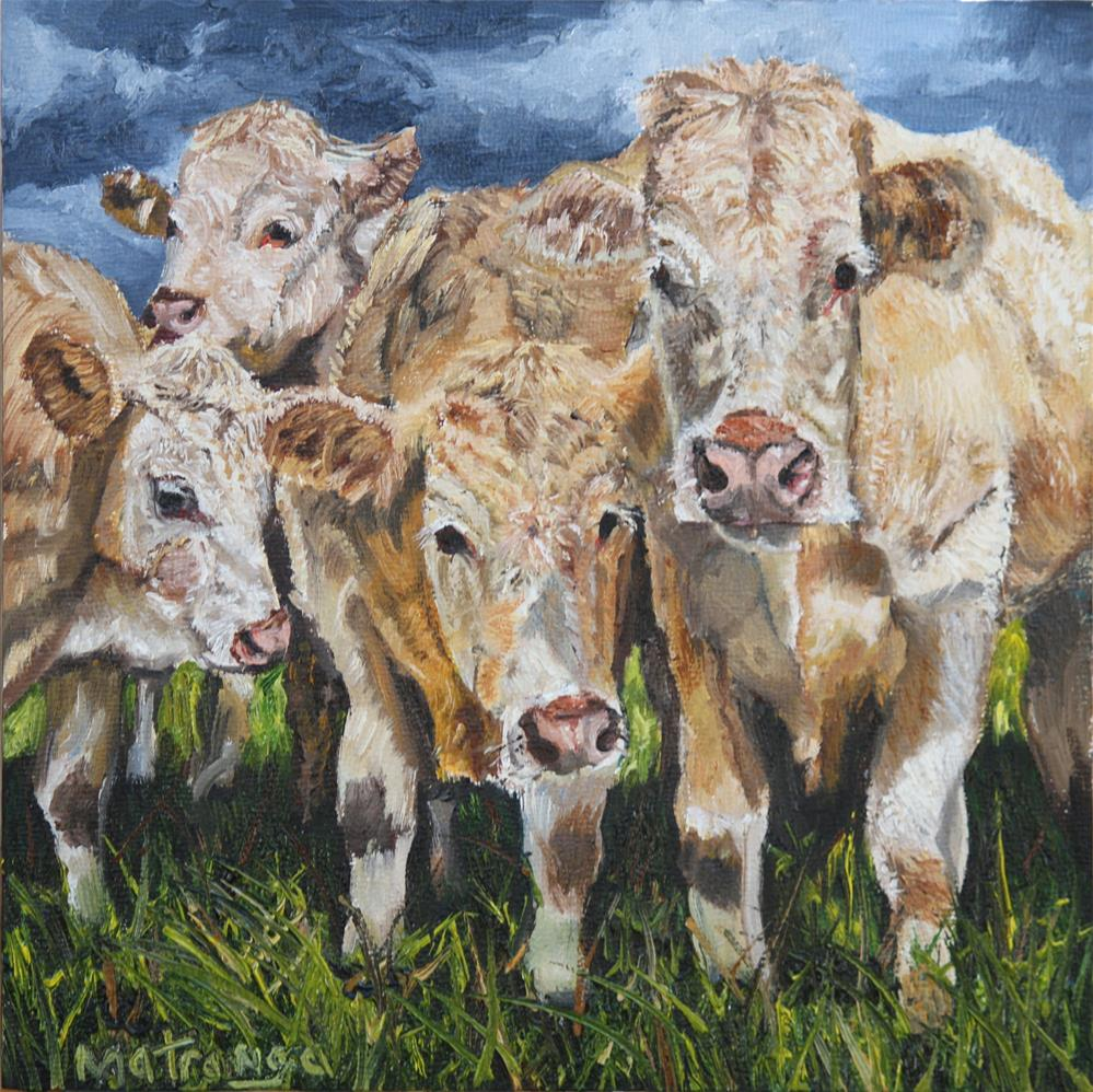"""Curious Cows"" original fine art by Patricia Matranga"
