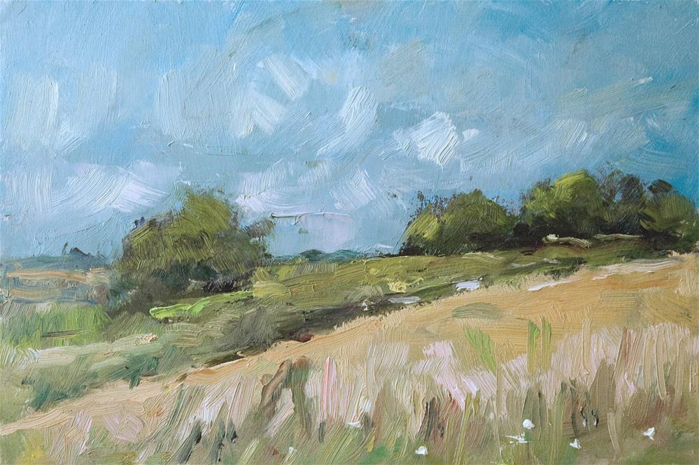 """Field near Wepham"" original fine art by Andre Pallat"