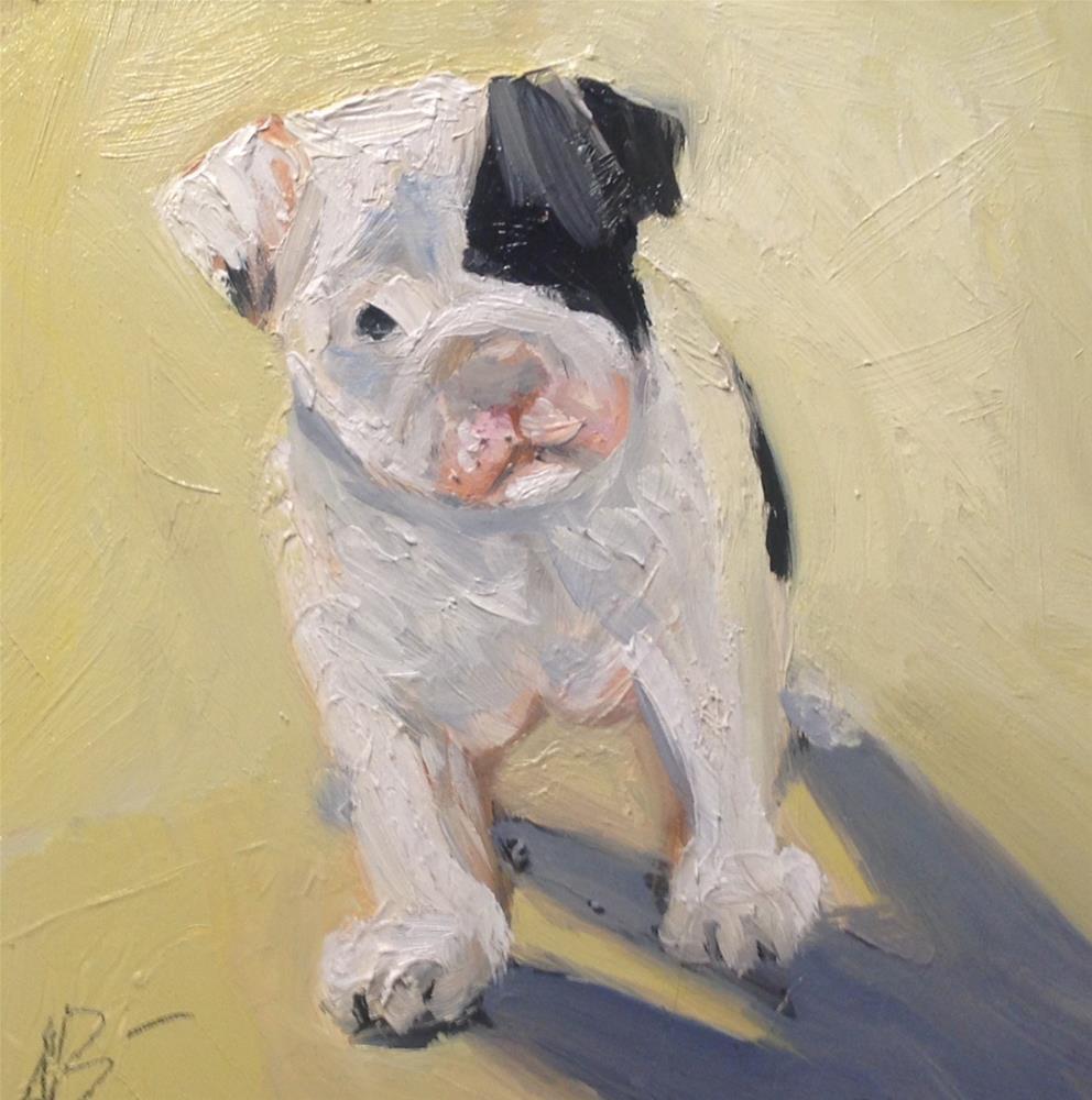 """Sunshine Pug"" original fine art by Annette Balesteri"
