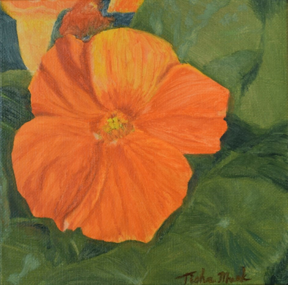 """Nasturtium 1"" original fine art by Tisha Mark"