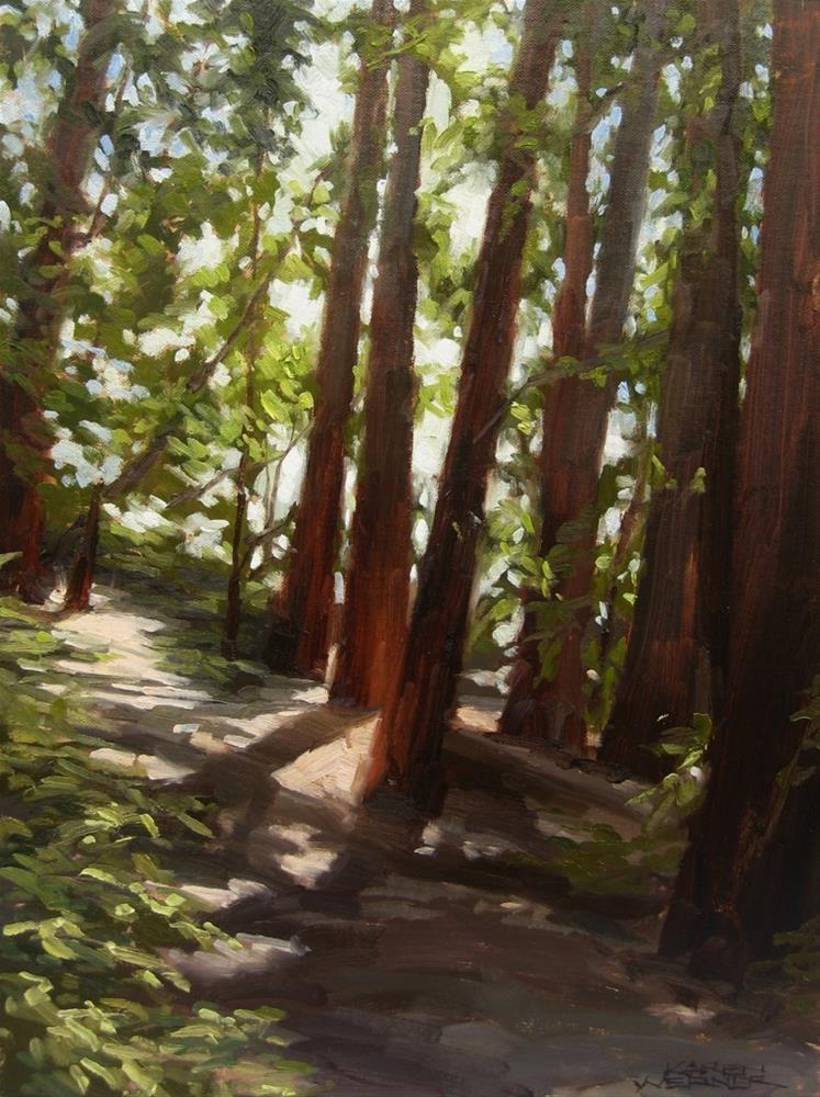 """""""Redwood Shadows"""" original fine art by Karen Werner"""