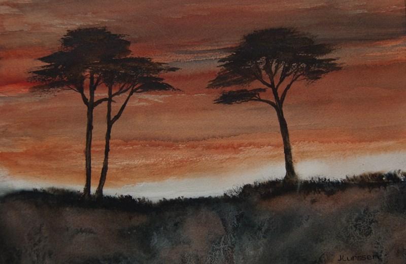 """""""Cypress Sunset"""" original fine art by Jean Lurssen"""