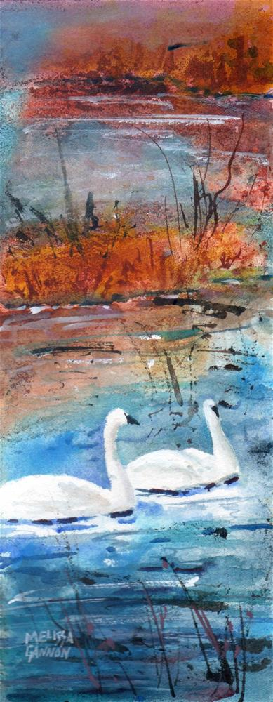 """Two Swans Swimming"" original fine art by Melissa Gannon"