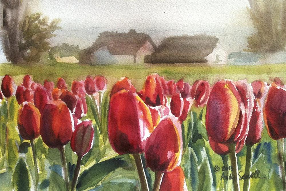 """Almost Tulip Time"" original fine art by Andy Sewell"