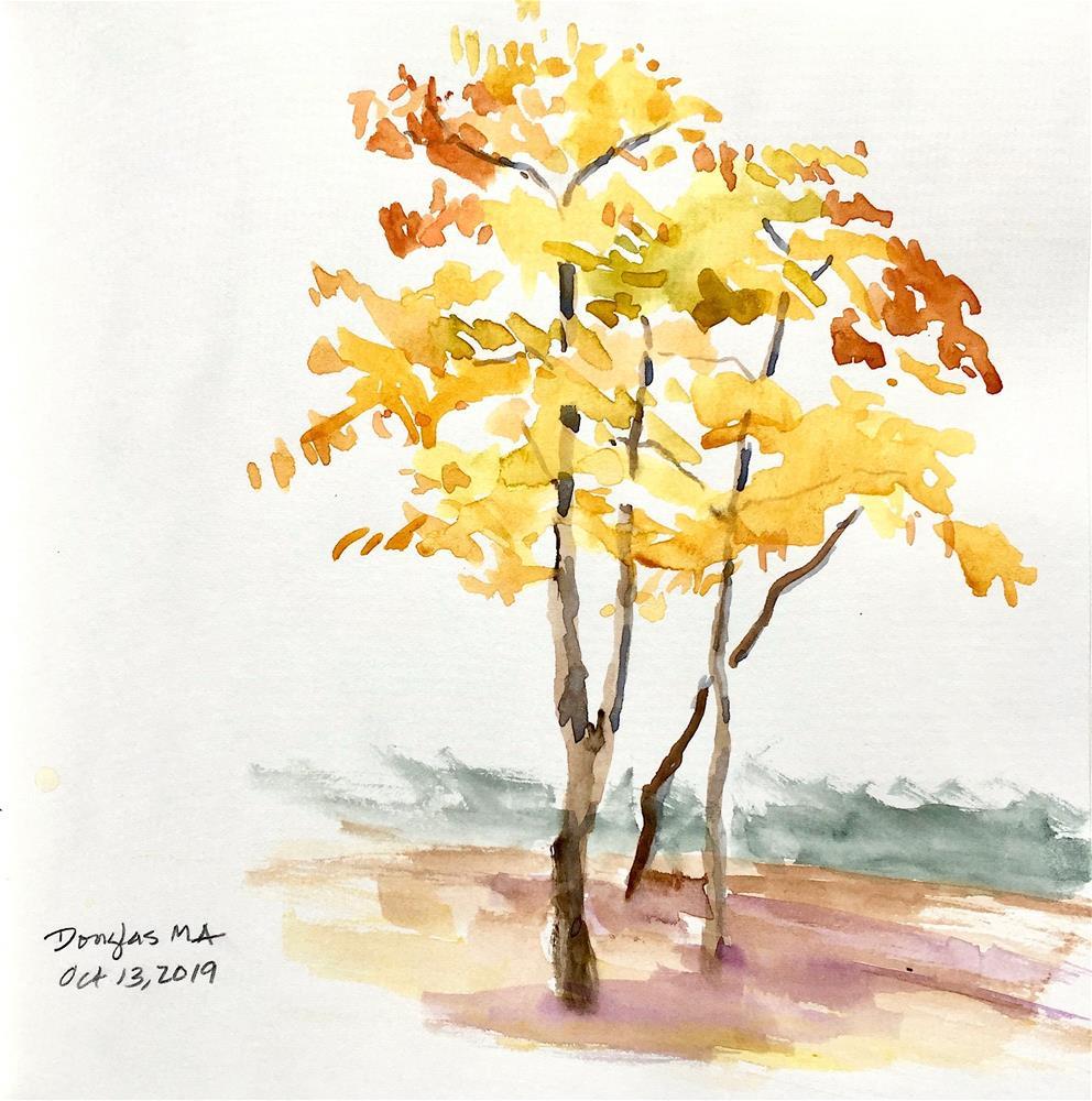 """Foliage study"" original fine art by Judith Freeman Clark"