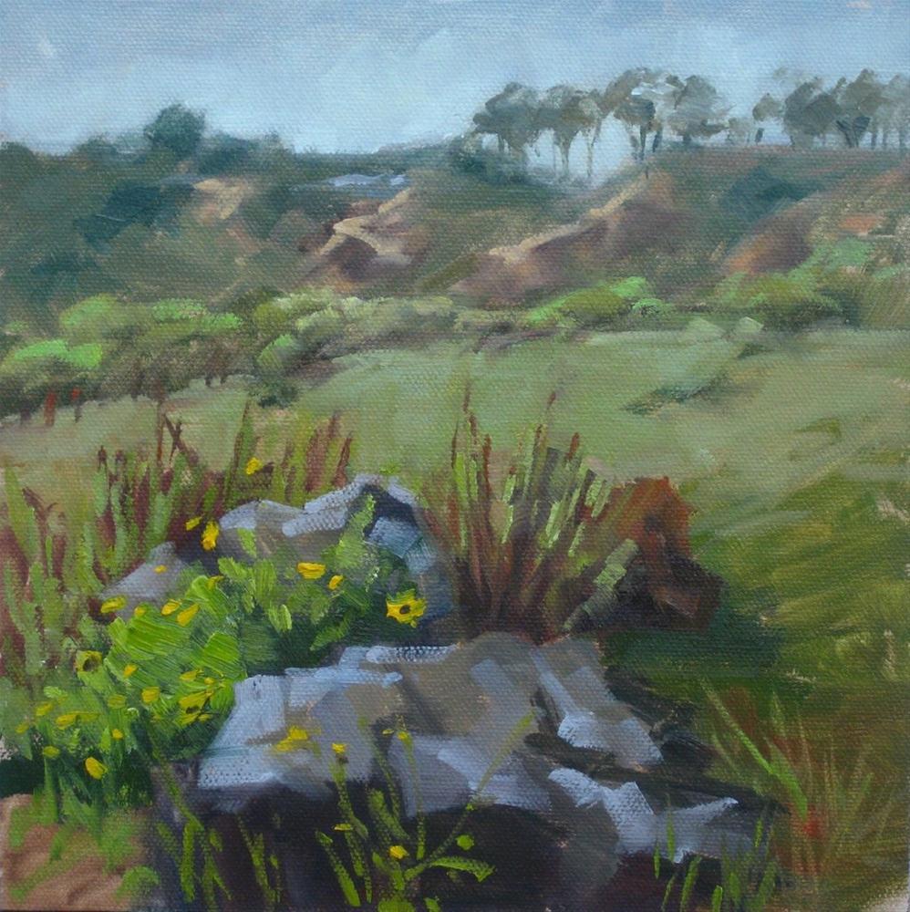 """""""Field Study 2"""" original fine art by Karen Werner"""