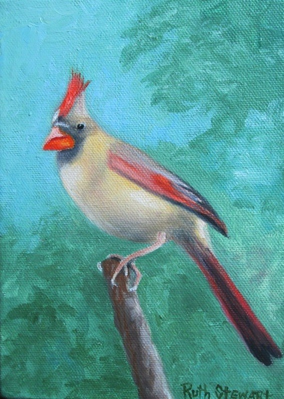 """Mama Cardinal"" original fine art by Ruth Stewart"