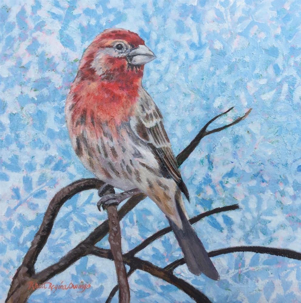 """""""Male House Finch"""" original fine art by Rhett Regina Owings"""