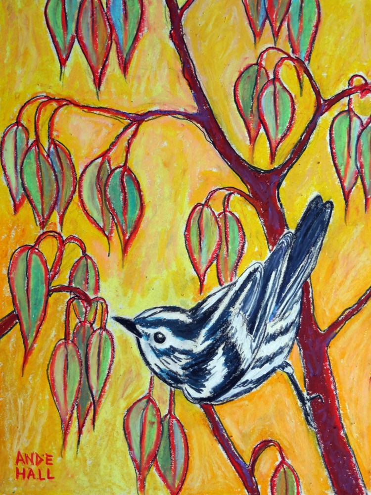 """""""Black and White warbler"""" original fine art by Ande Hall"""
