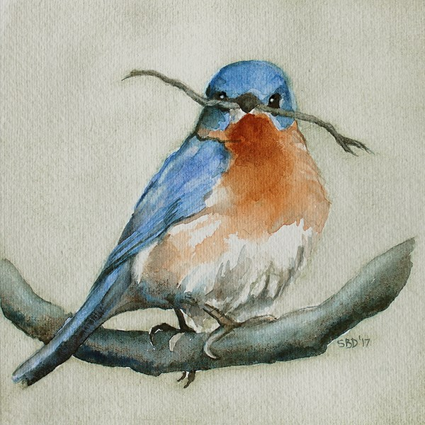 """Bluebird"" original fine art by Sarah Buell Dowling"