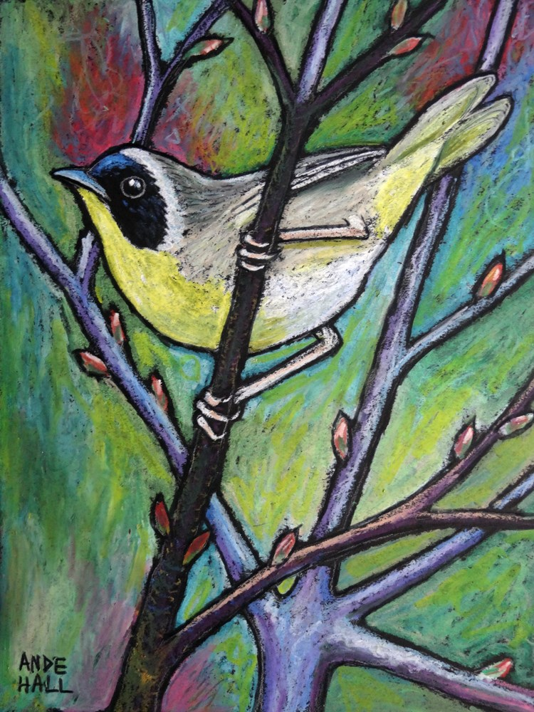 """Common Yellowthroat"" original fine art by Ande Hall"