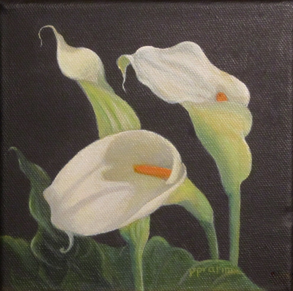 """Cala lilies"" original fine art by Pratima Patel"