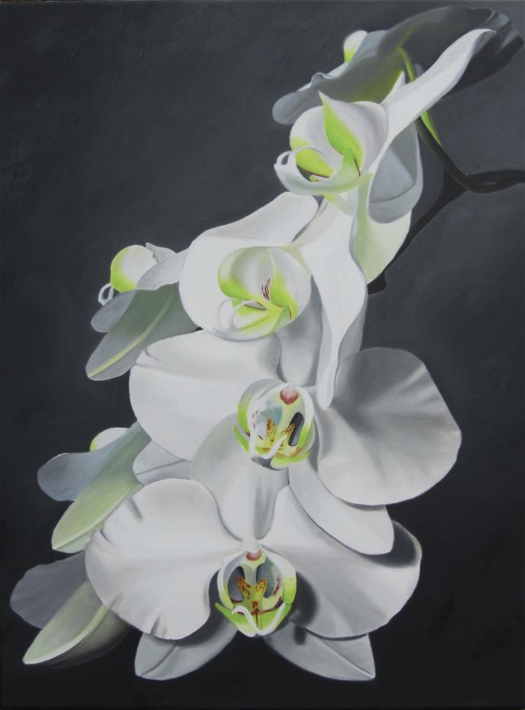 """Orchid Ovation"" original fine art by Amy Hillenbrand"