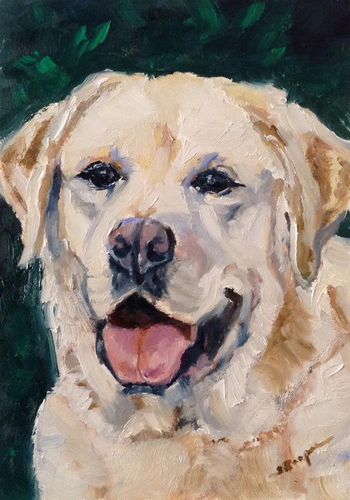 """""""Bo"""" original fine art by Shelley Koopmann"""