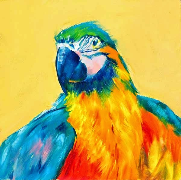 """Rainbow Feathered"" original fine art by Brenda Ferguson"