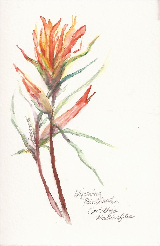 """Wyoming Paintbrush"" original fine art by Jean Krueger"