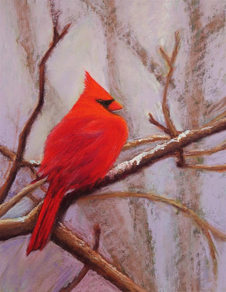 """""""Cardinal in the Snow"""" original fine art by Sharon Lewis"""