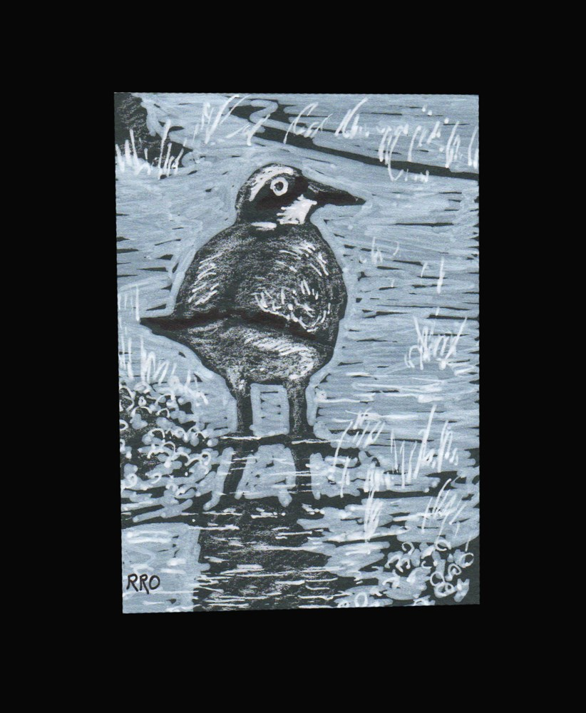 """Marsh Bird"" original fine art by Rhett Regina Owings"